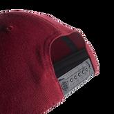 Alternate View 4 of Golf Flag Hat