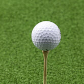 Golf Gifts & Gallery 2 3/4 inch Hardwood Golf Tees lifestyle