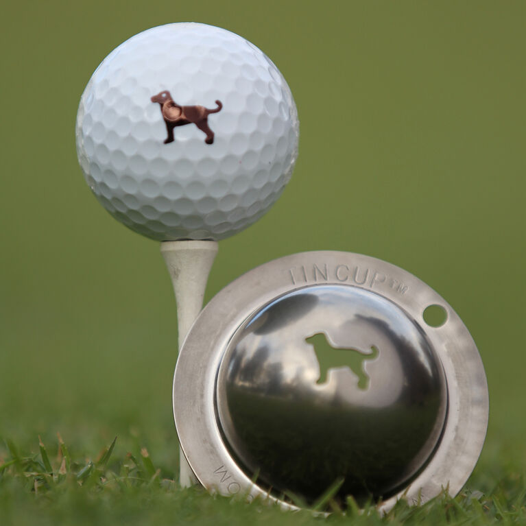 Tin Cup- Dulin the Dog