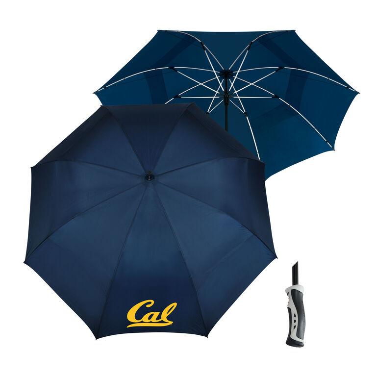 Team Effort UC Berkeley Umbrella