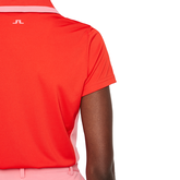 Alternate View 5 of Poppy Tipped Collar Polo Shirt