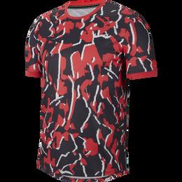 Dri-FIT Men's Printed Tennis Shirt
