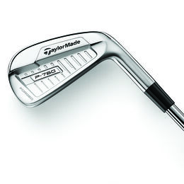TaylorMade P760 3-PW Iron Set w/ DG 120 Steel Shafts
