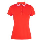 Alternate View 6 of Poppy Tipped Collar Polo Shirt