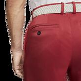 Alternate View 4 of Flex Men's Golf Shorts
