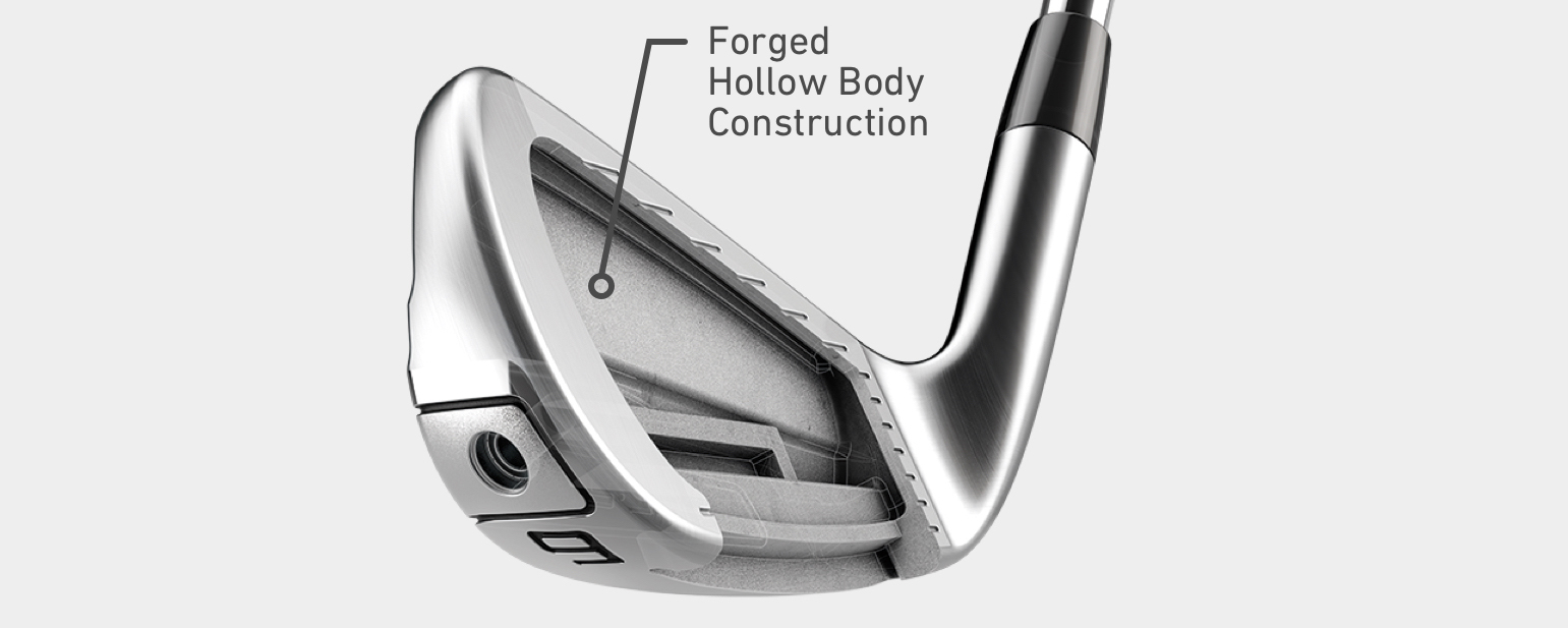 TaylorMade P790 Hollow Body